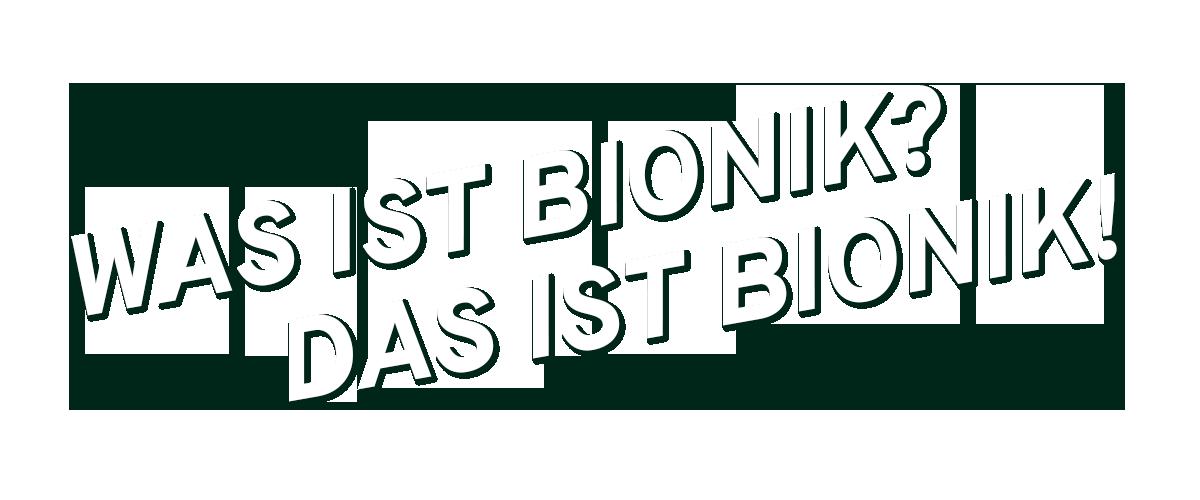 """""""Was ist Bionik? Das ist Bionik!"""" Nahaufnahme der Füße eines Gecko"""