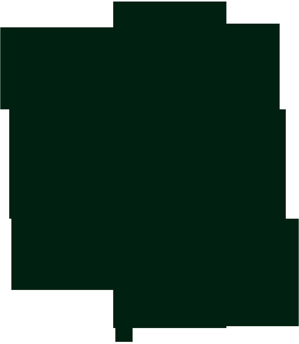 Illustration eines Nebeltrinker-Käfers, der nur im Kopfstand trinken kann