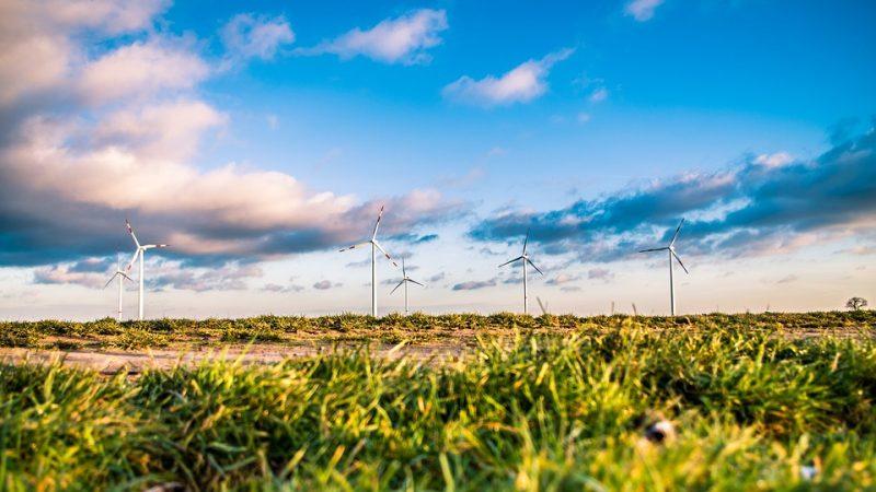 Blick über eine grüne Wiese zu mehreren Windkrafträdern vor einem wolkigen aber blauen Himmel