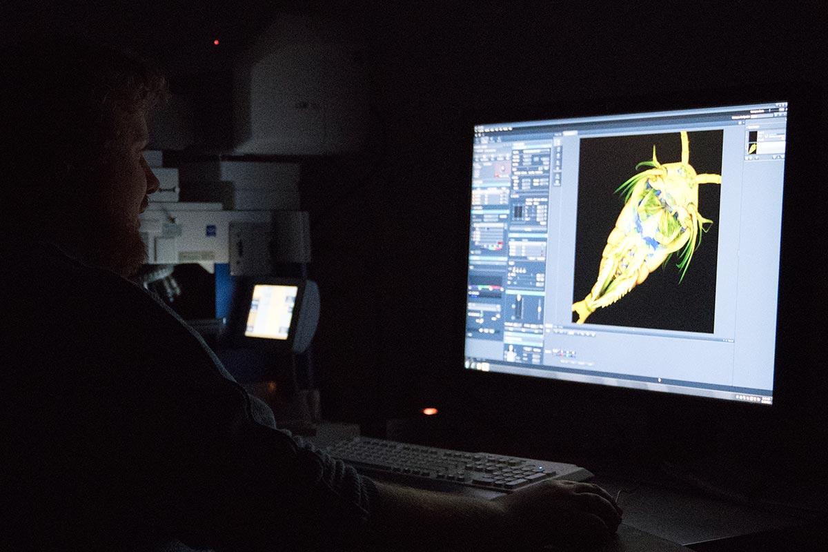 Dennis im Dunkeln vor einem Computerbildschirm, auf dem das Bild eines Laser-Mikroskop angezeigt wird