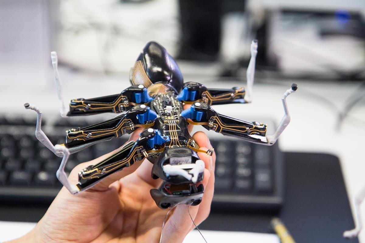 Blick auf die Unterseite der Roboter-Ameise von Festo. Gut zu sehen sind hier die vielen am Körper verteilten Mini-Platinen und die Sensoren
