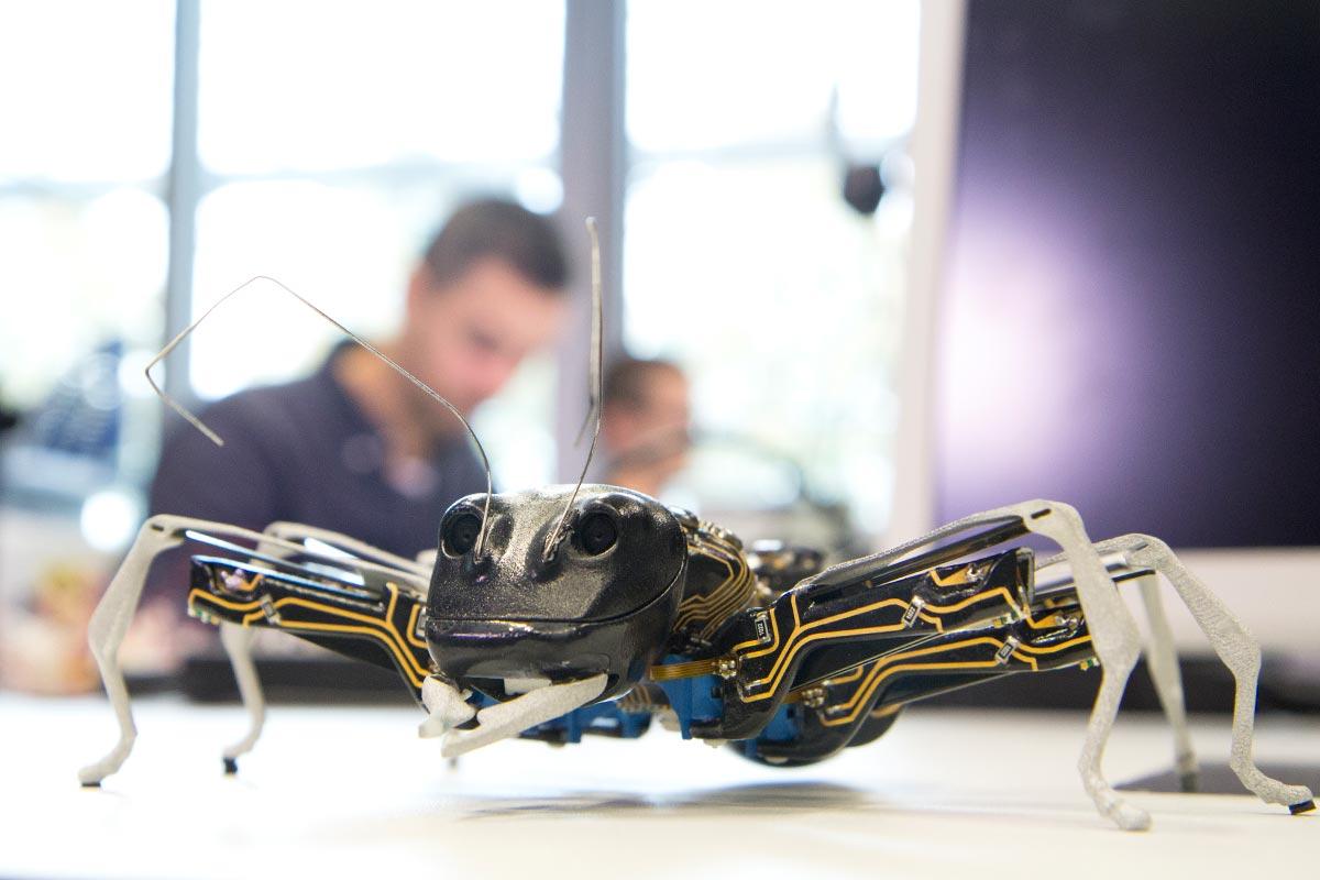 BionikANT, die Hightech-Roboter-Ameise von Festo –ein intelligenter, lächelnder Roboter auf sechs Beinen.
