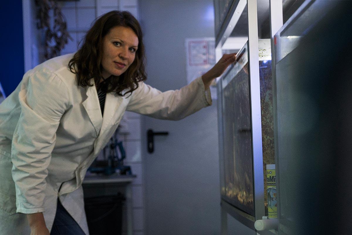 Stefanie steht vor einem Aquarium. Algen, Fische und Seepocken werden von ihr gehegt und gepflegt um sie zu erforschen